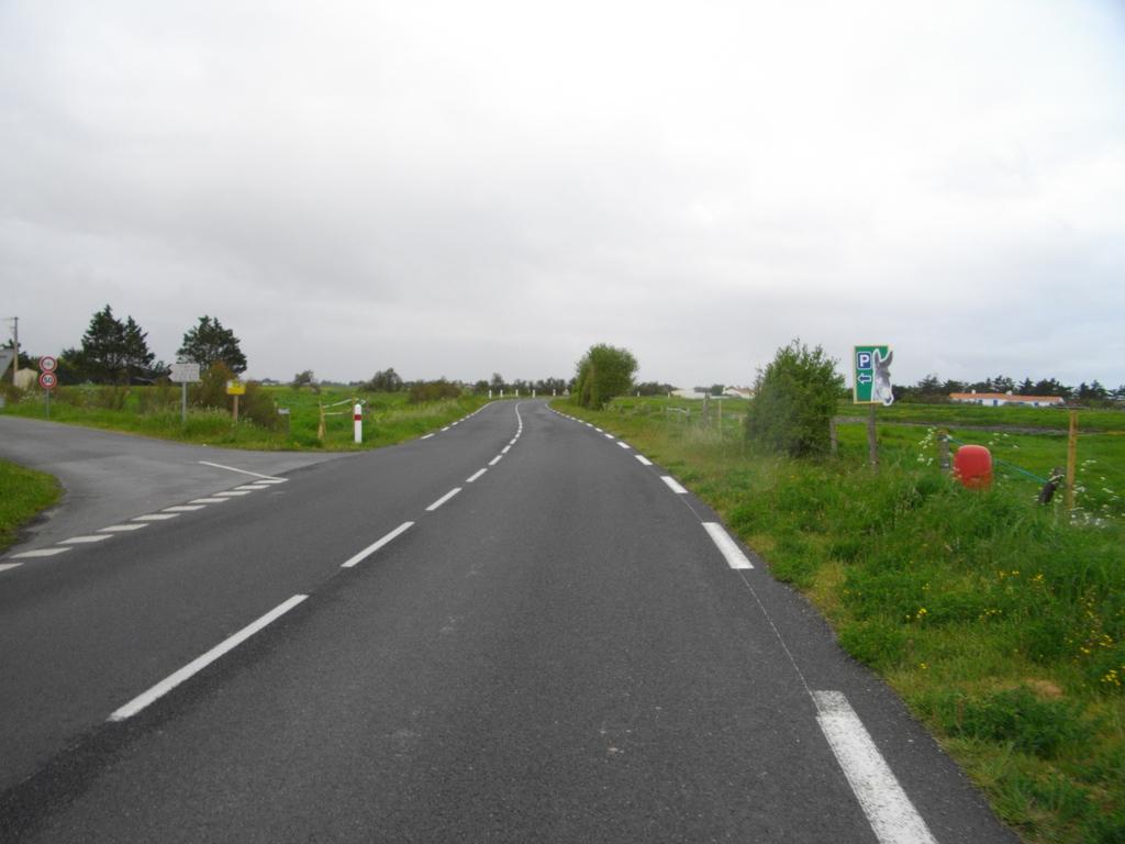 CCCIMGP4948